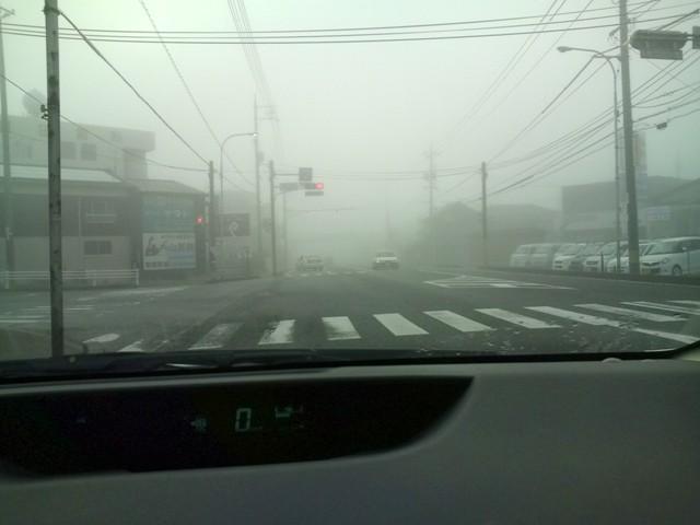霧の中の信号